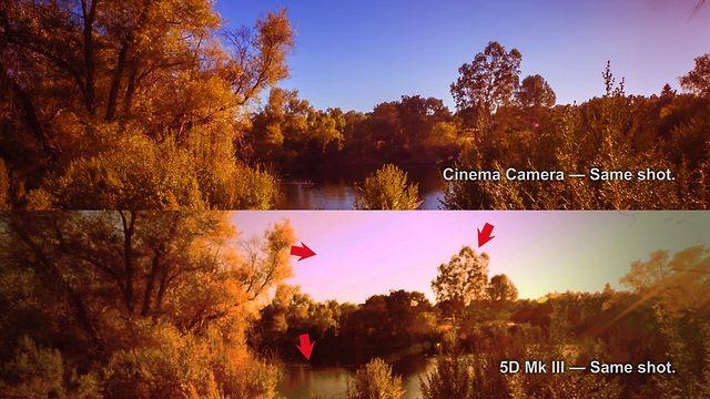 Comparativa entre BlackMagic Cinema Camera y Canon Eos Mark III